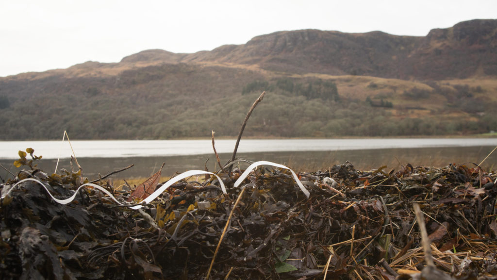 Tie banding polluting the shore of Loch Riddon, near Colintraive