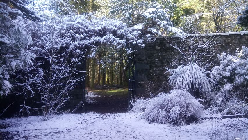 Kilmory Castle Garden. Photographer Grace Heafey said 'its like looking at two seasons at once'.