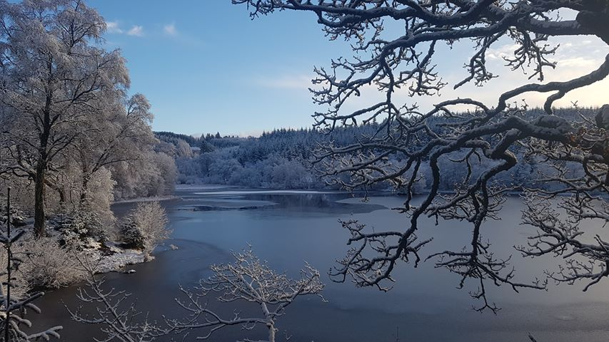 Allan MacIntyre sent this beautiful scene of an ice-coated Kilmory Loch, Lochgilphead.