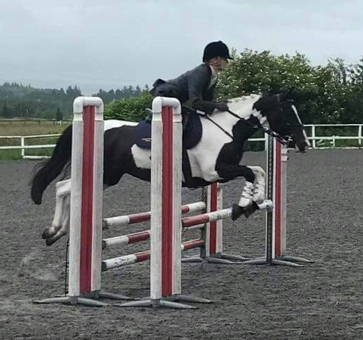 Argyll riding club shows big ambition at qualifiers