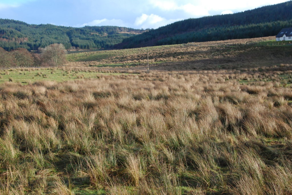 Views wanted on land ownership in Scotland