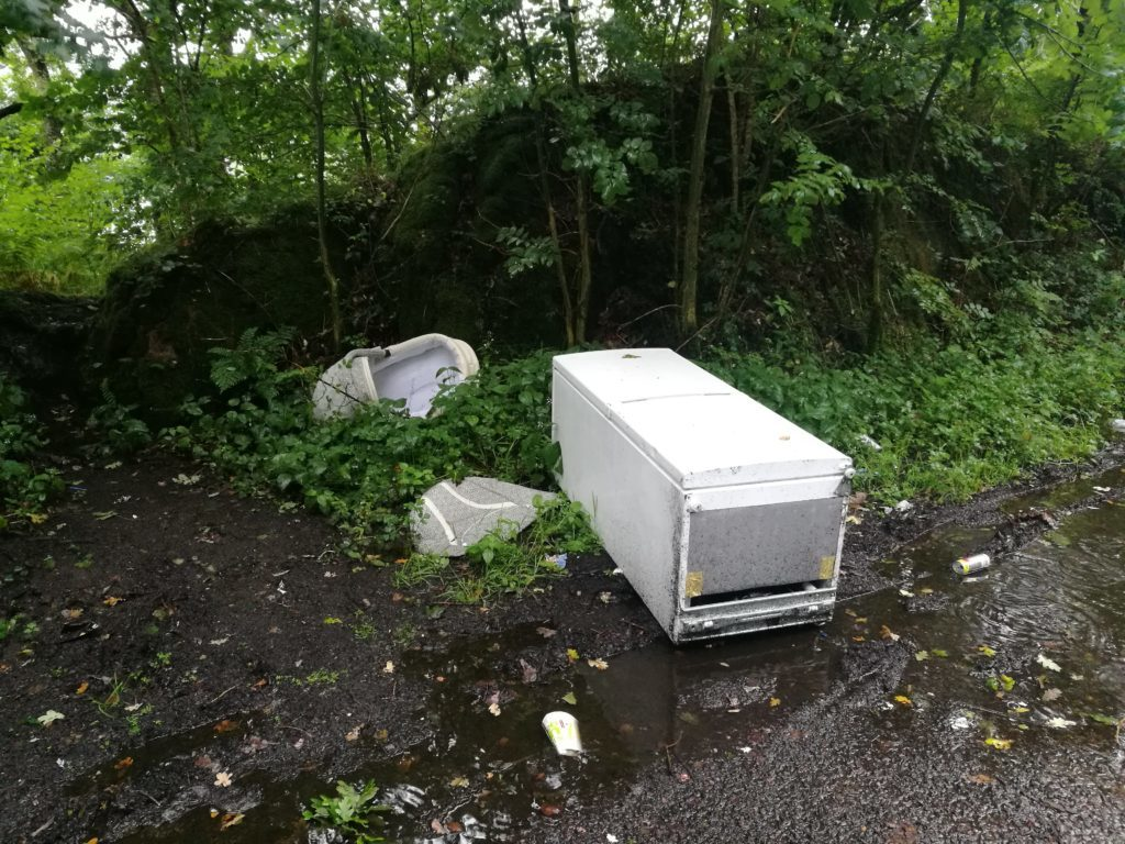 Dumping your old freezer? Not cool
