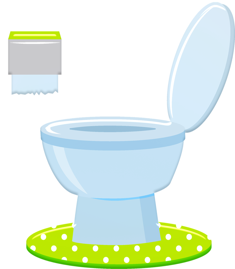 The humble toilet – more important than you might imagine