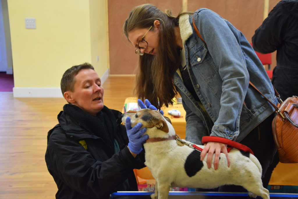 Dogs Trust gives out free health checks and microchipping